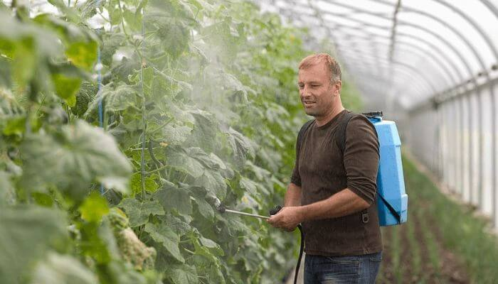 How to Use a Backpack Sprayer